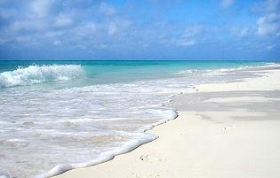 beach-652119_640.jpeg