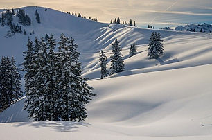 winter-4699770_640.jpeg