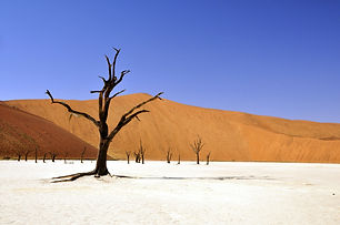 Namibie-three-64311_1920.jpg