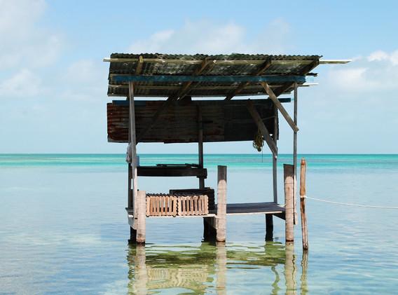 Belize_Quetzal Motivo_2