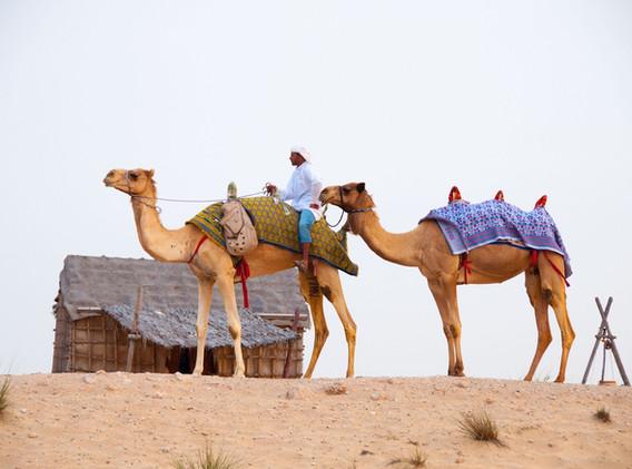 Dubaï_3