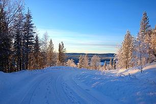 landscape-3958053_640.jpeg