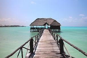 paradise-1582173_640.jpeg