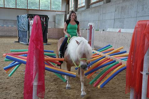 Pferdespielplatz