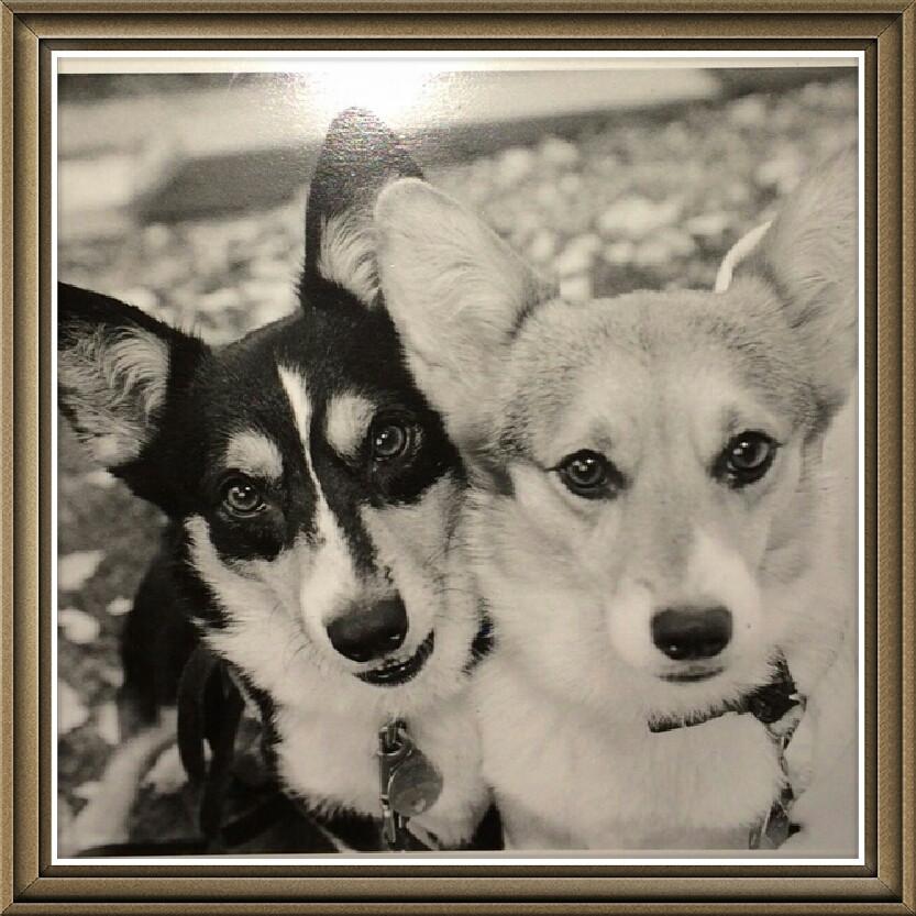 Tex & Miss T