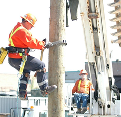 PBW Pole Worker.png