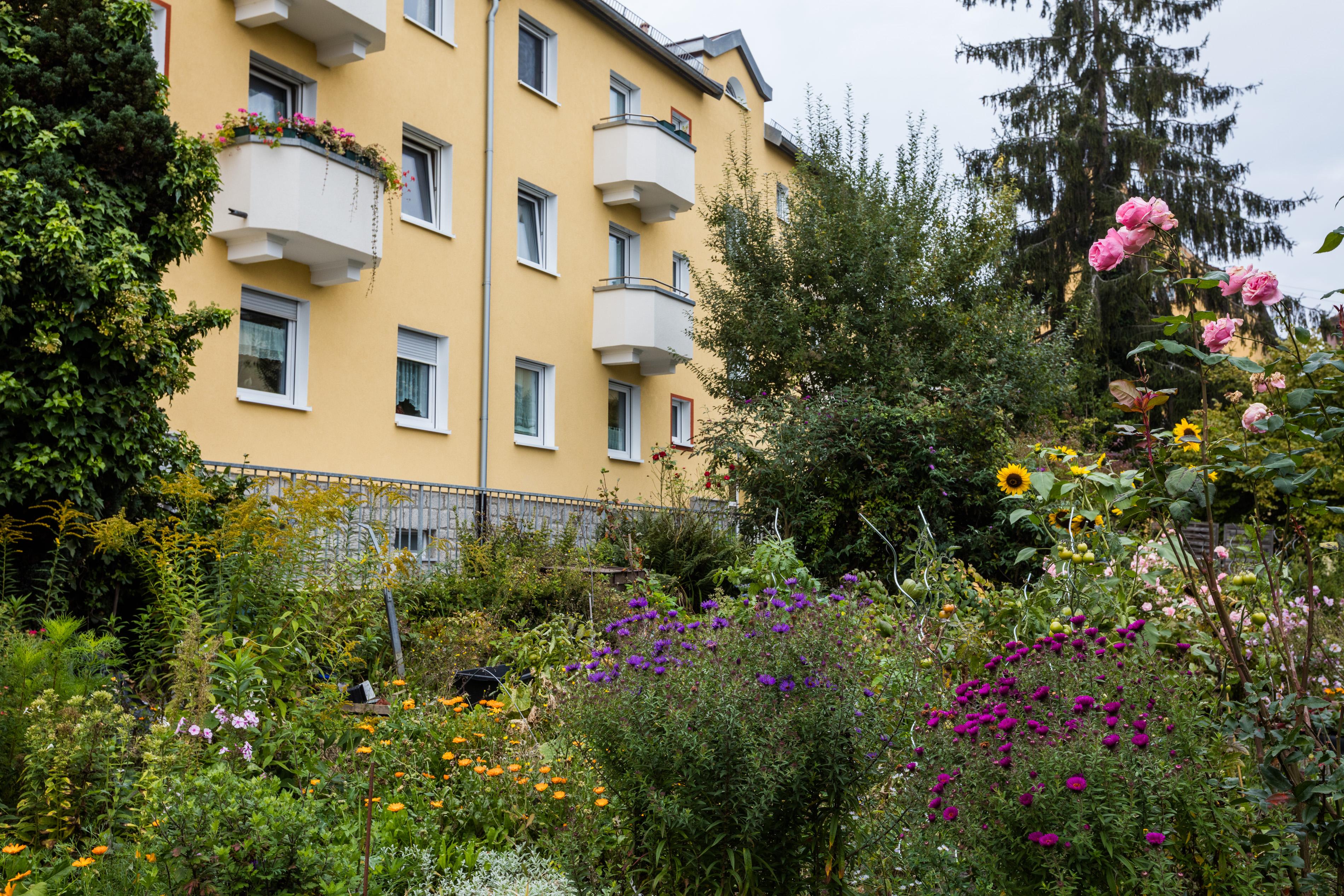 Heimgarten-46