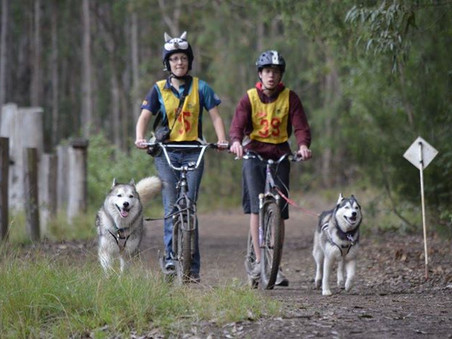 What is Sled Dog Racing in Australia?