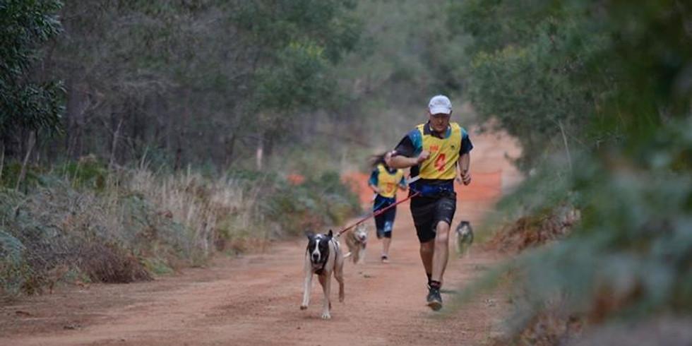 Working Bee and Training Run