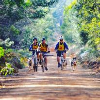 Bikejoring Class