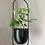 Thumbnail: Oval Hanging Planter