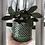 Thumbnail: Criss Cross Pattern Pot-Teal