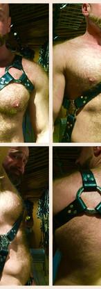 Three Point Gladiator Harness
