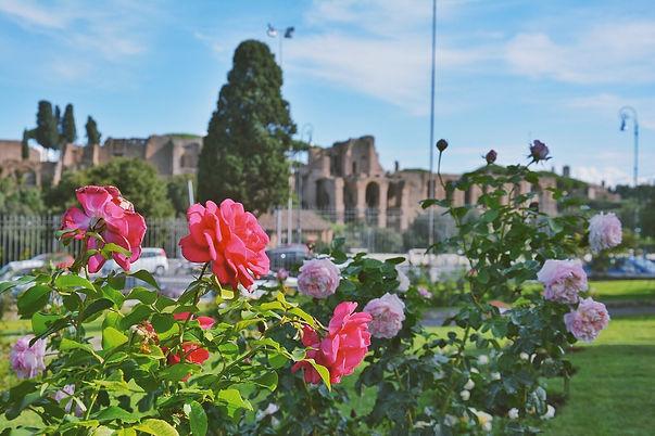 Rose Garden rome.jpg