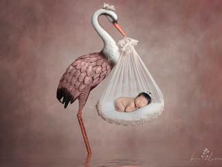 Ensaio Newborn da Sophia