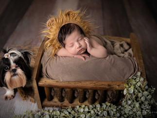 ensaio-newborn-a-domicilio-Alexandre-Henrique-
