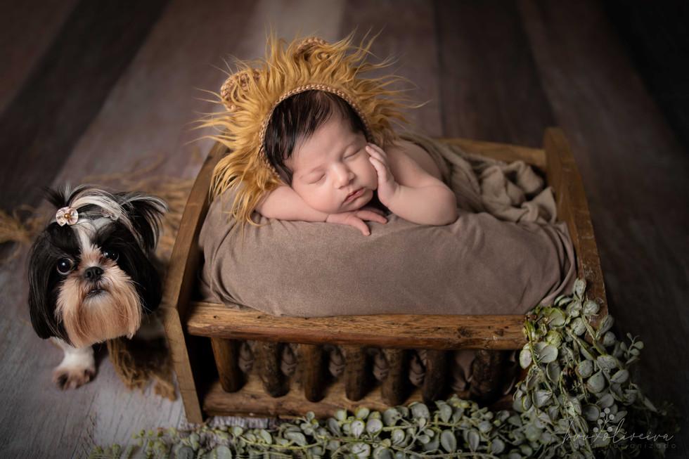 ensaio-newborn-alexandreh