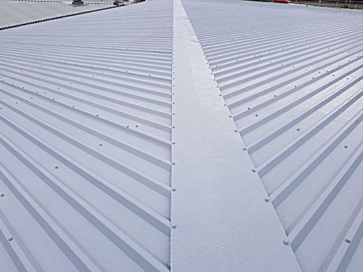 roof coatig swidon