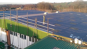 Asbestos roof sheet that had delaminated due to adverse weather