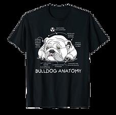 bulldoganatomy.png