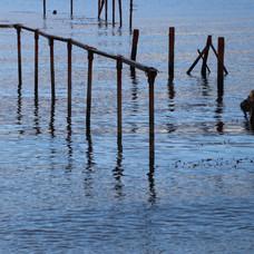 Estrecho de Magallanes #1