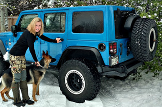 Shaping a Trail Dog: 12 Tips for Success