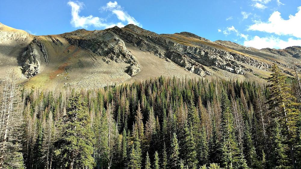 Hermit Pass trail
