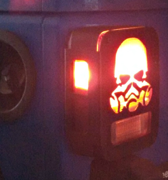 Skull tail light guard