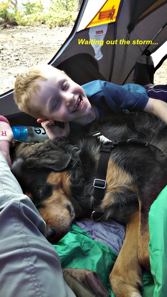 7 Tips to Make Camping With Kids Awesome!