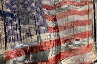 Veteran's Day Trail Run!