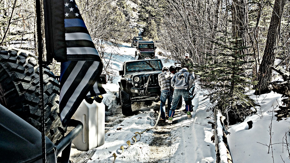 chicks on the rocks