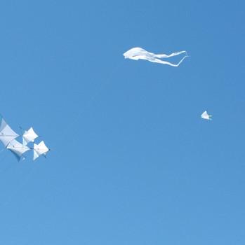 Kite Days