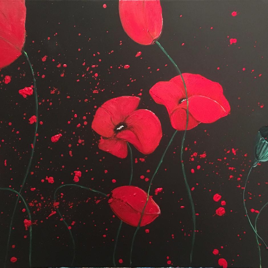 Midnight Poppies $280