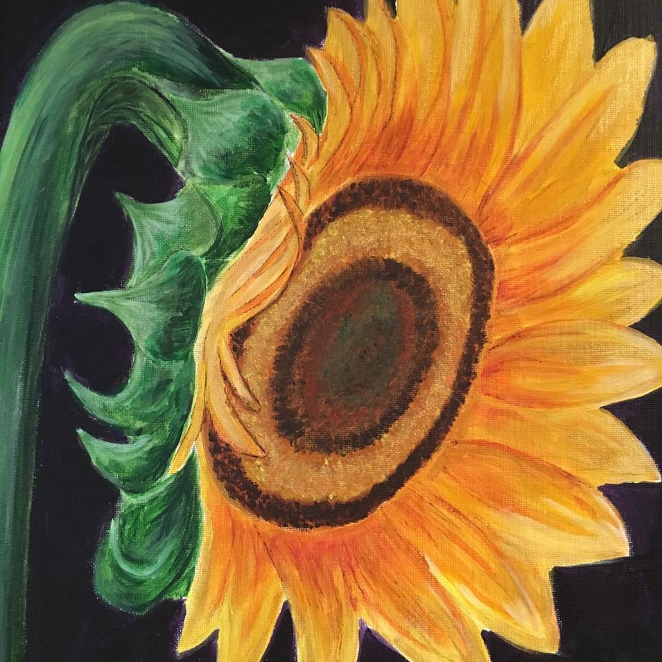 Sunflower $330