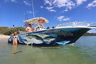 sydney charter fishing
