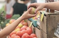 שתי ידיים מחזיקות תפוח.jpg