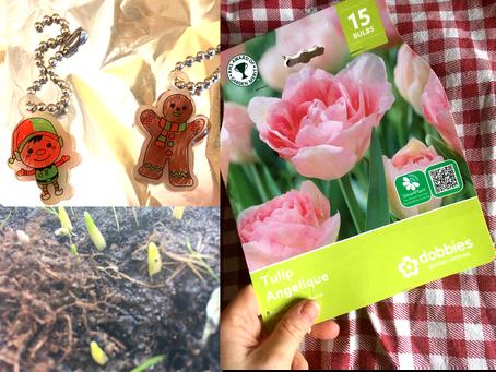 Growing Bulbs and Shrinking Plastic: New Blog Tutorials