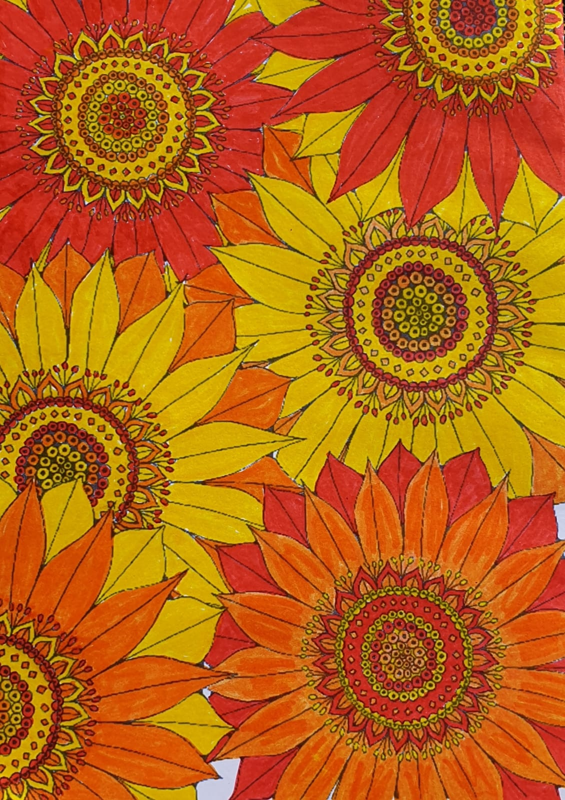 Sunflower Color Sheet