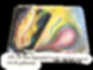 IMG-20200728-WA0003_edited.png