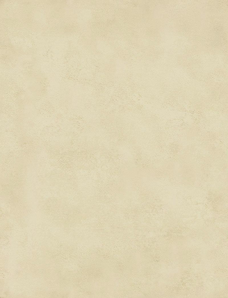 plain parchment 2.jpg
