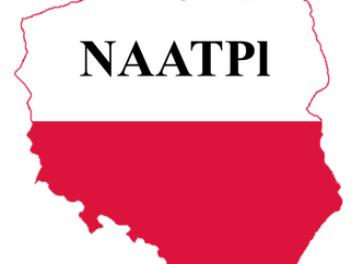 NAATPl Instructor Award for Exemplary Teaching and Learning Materials