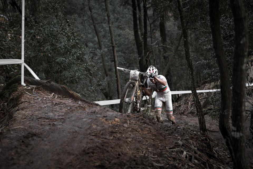 David Rosa - bicycling edition...