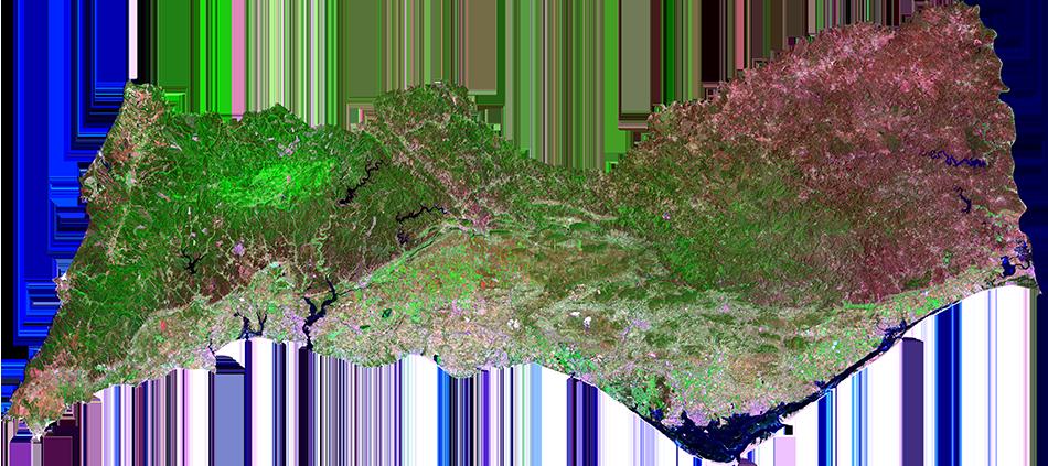 Algarve • 23 Julho 2016 • false color / vegetation (7-5-3 band combination)