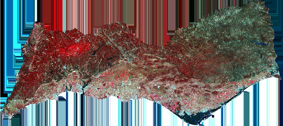 Algarve • 23 Julho 2016 • infrared conventional color / vegetation (5-4-3 band combination)