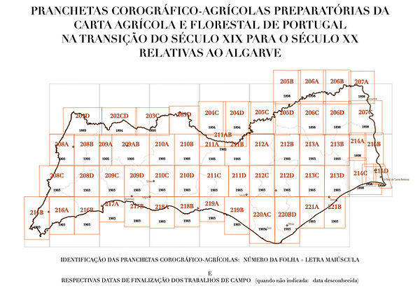 Figura 1.B - Cartograma Pranchetas WEB.jpg