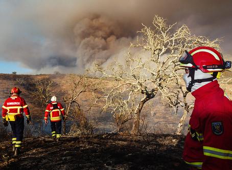 rever o incêndio de S Bartolomeu de Messines