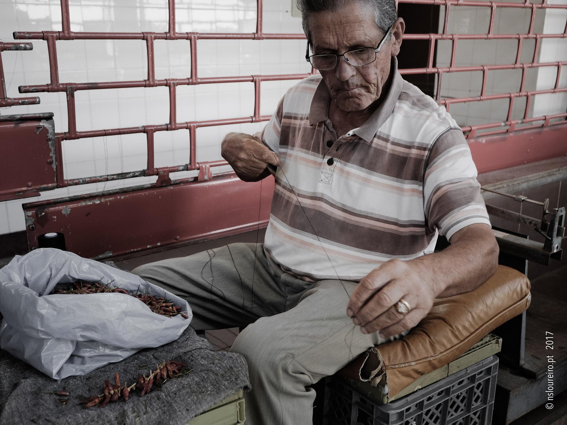 O COSTUREIRO E AS MALAGUETAS • Mercado dos Lavradores, Funchal