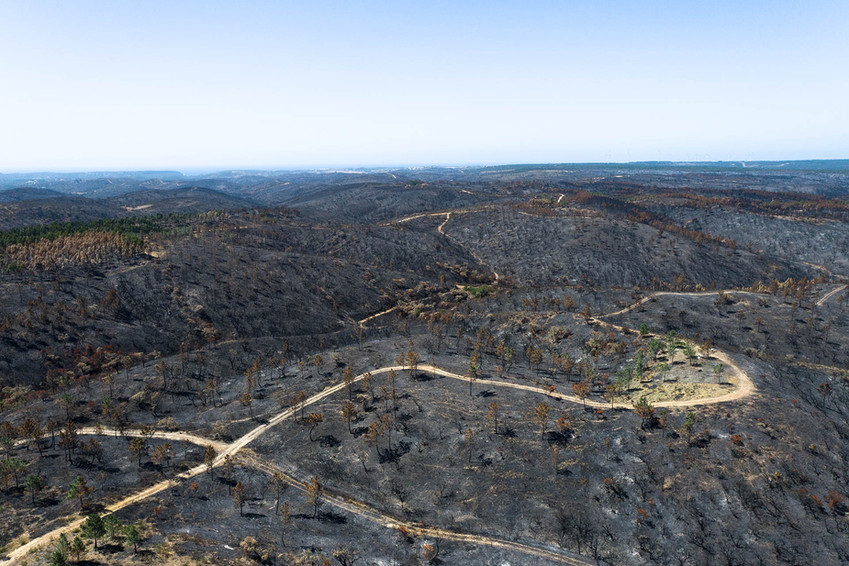 Incêndio florestal e rural entre 19 e 22 de Junho de 2020   |   Vila do Bispo   |   3 de Julho de 2020
