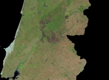 Incêndios florestais em Portugal continental