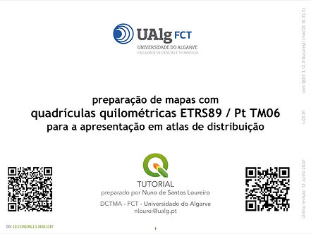 QGIS capa quadriculas.jpg